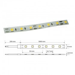 STRIP LED 5050 12V 60W 60LED/M 4K DIMMERABILE IP65